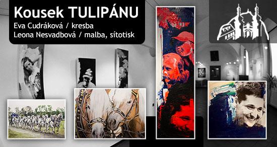 Sdružení TULIPÁN