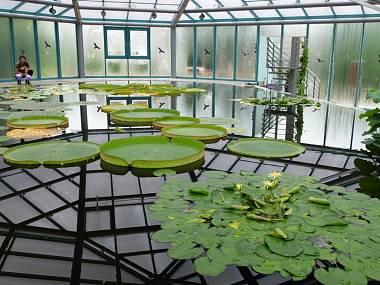 3-botanicka-hlavni_denik-380