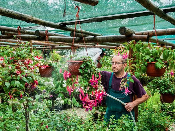 V zahradě libereckého pěstitele Pevného rozkvétají stovky květin