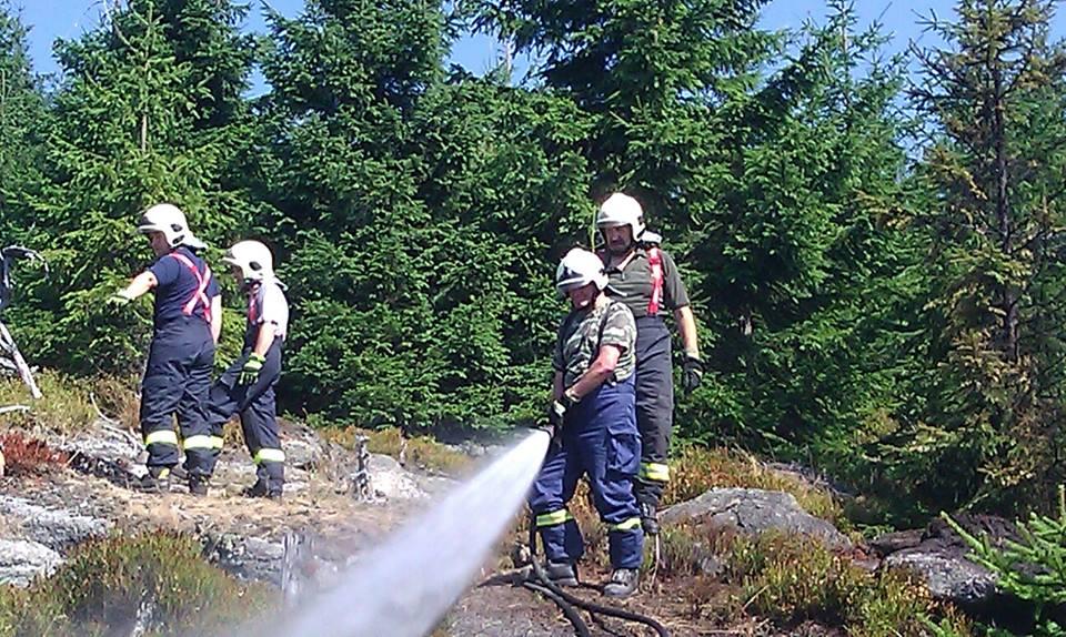 Požár lesního porostu v Jizerských horách