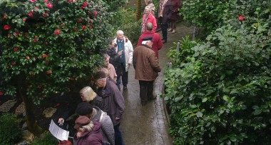 380x203-1441272708-botanicka-zahrada-v-liberci