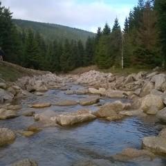 Revitalizace řeky Smědé pomůže pstruhům