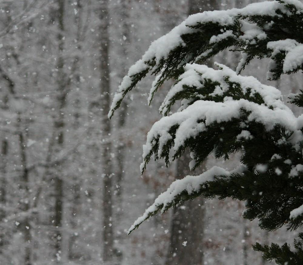 Zima se ještě nevzdává. Meteorologové vydali varování před silným sněžením