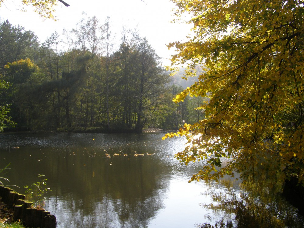 Zámecký rybník ve Frýdlantu se letos zřejmě dočká obnovy