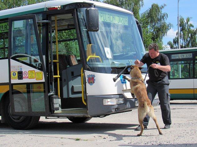 Mistrovství psovodů v Heřmanicích: Nejkrásnější pes a mariuhana v autobusech