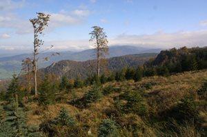 Objevte tajemná místa Jizerských hor