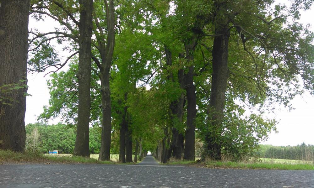 Pět silnic na Frýdlantsku se dočká rekonstrukce