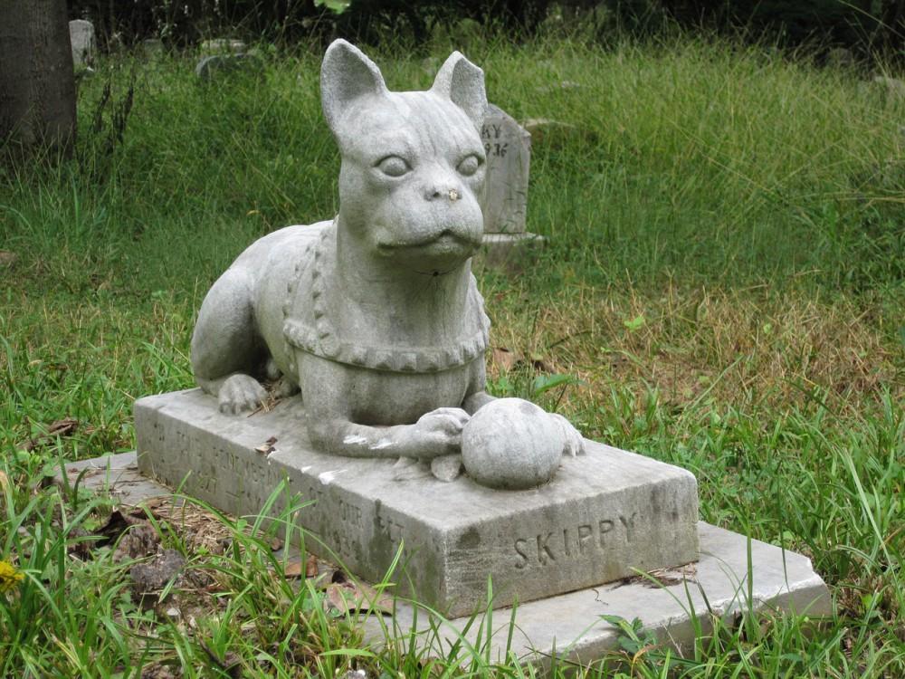 V Libereckém kraji začalo fungovat první zvířecí krematorium