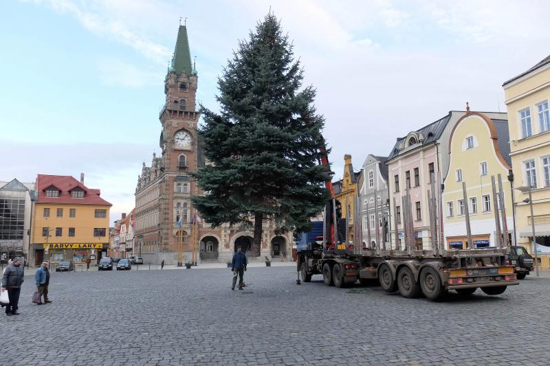 Frýdlant hledá vánoční strom pro letošní Advent