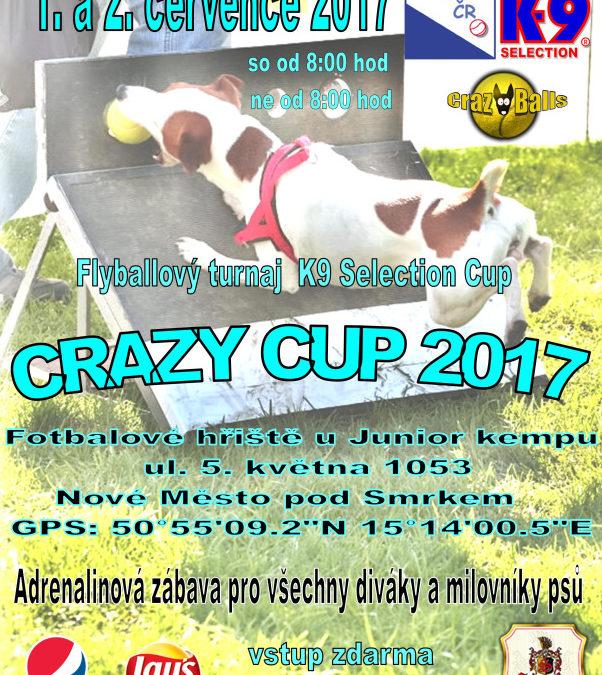Crazy Cup 2017