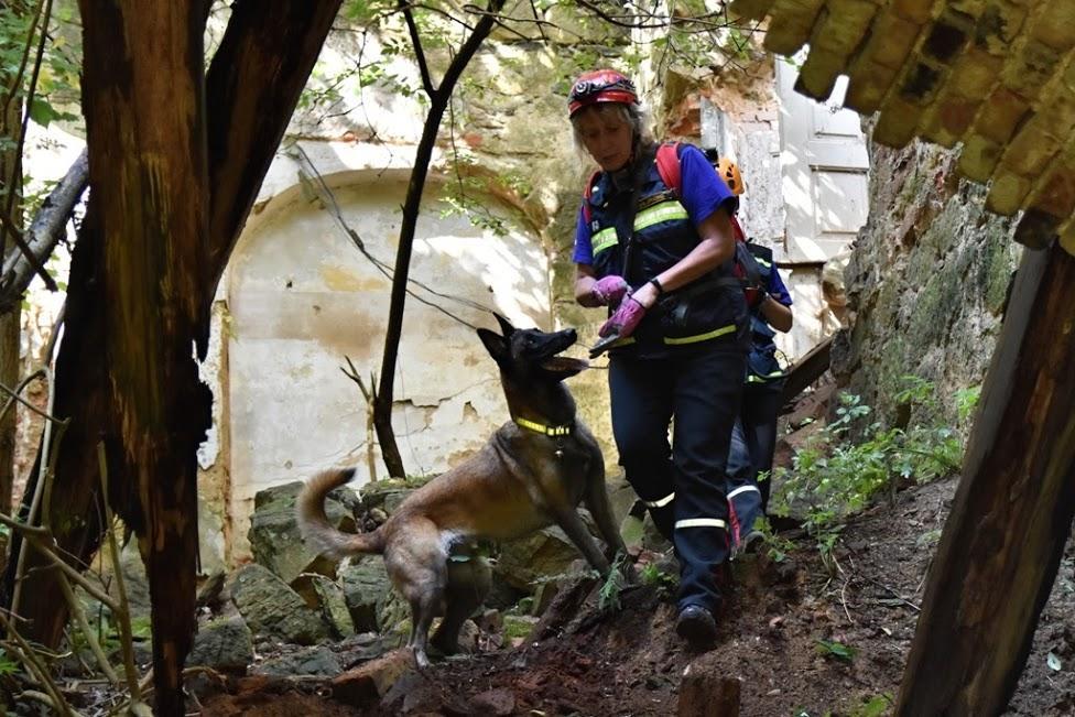 V Jablonném zachraňovali psi z celé ČR