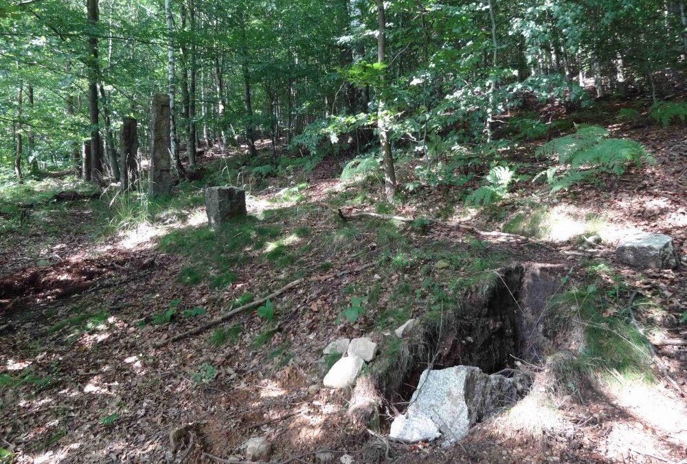 Zloději z unikátní Clam – Gallasovské obory ukradli čtyři kamenné sloupky. Další poničili