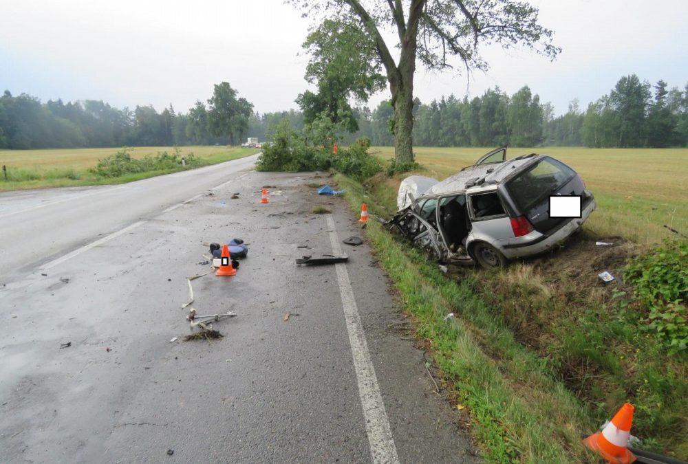 Stromy a vegetace nejednou bývají nepřímou příčinou závažných nehod