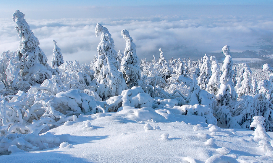 Právě vyšlo lednové číslo časopisu Krkonoše – Jizerské hory