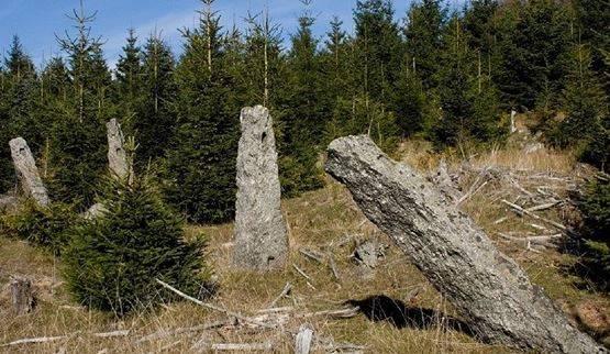 V horách stojí osm tisíc sloupků, hraběcí obora se možná stane památkou