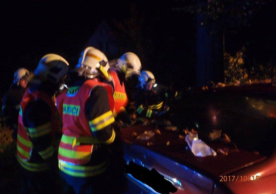 U Frýdlantu narazilo auto do stromu. Mladý řidič svým zraněním v nemocnici podlehl