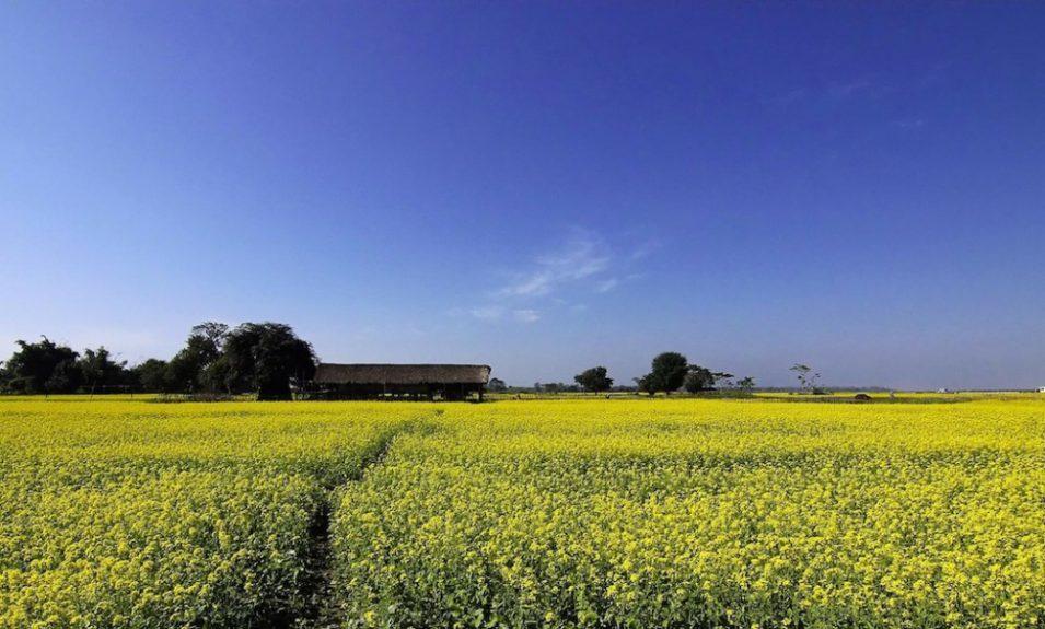 Kvůli suchu ubývá vody v potocích a řekách. Zemědělci čekají menší úrodu