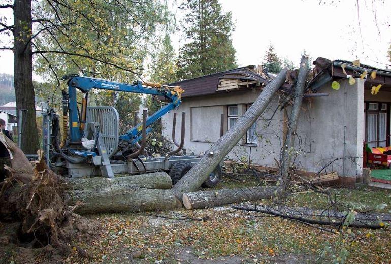 Na školku ve Frýdlantském výběžku spadl strom, vítr poničil i střechu školy