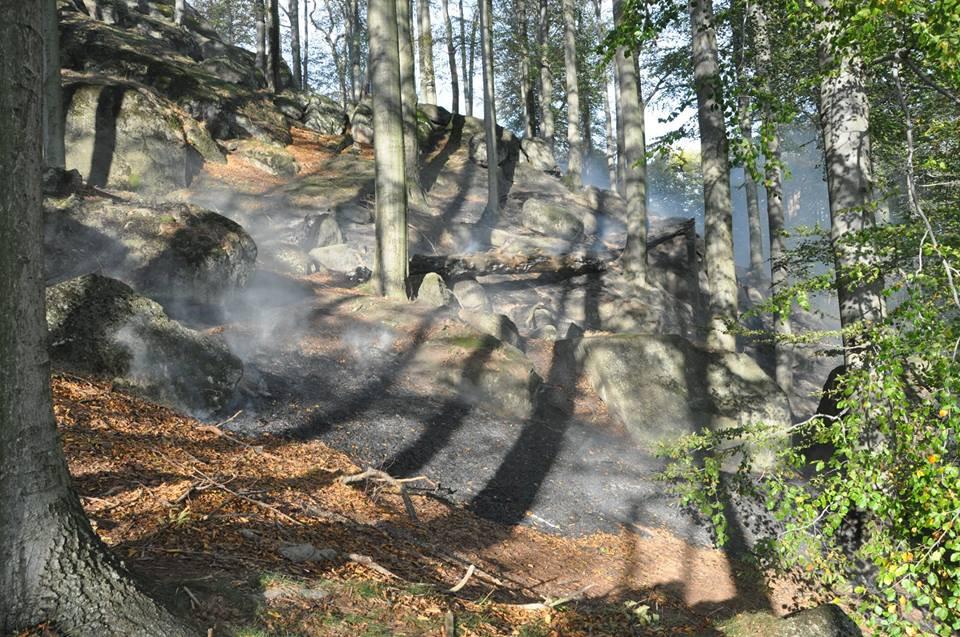 VIDEO: U Raspenavy hoří několik hektarů lesa. Na místo byl povolán vrtulník