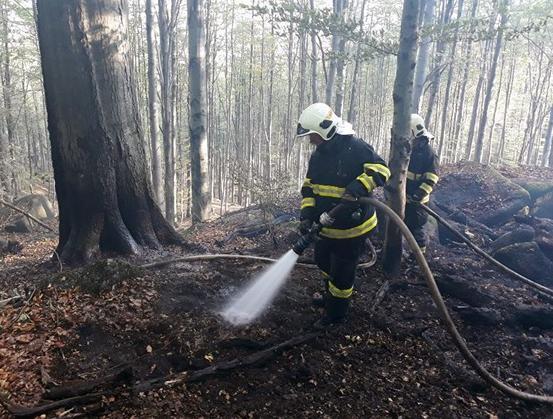U Raspenavy na Liberecku hoří les, s hašením pomáhá i vrtulník