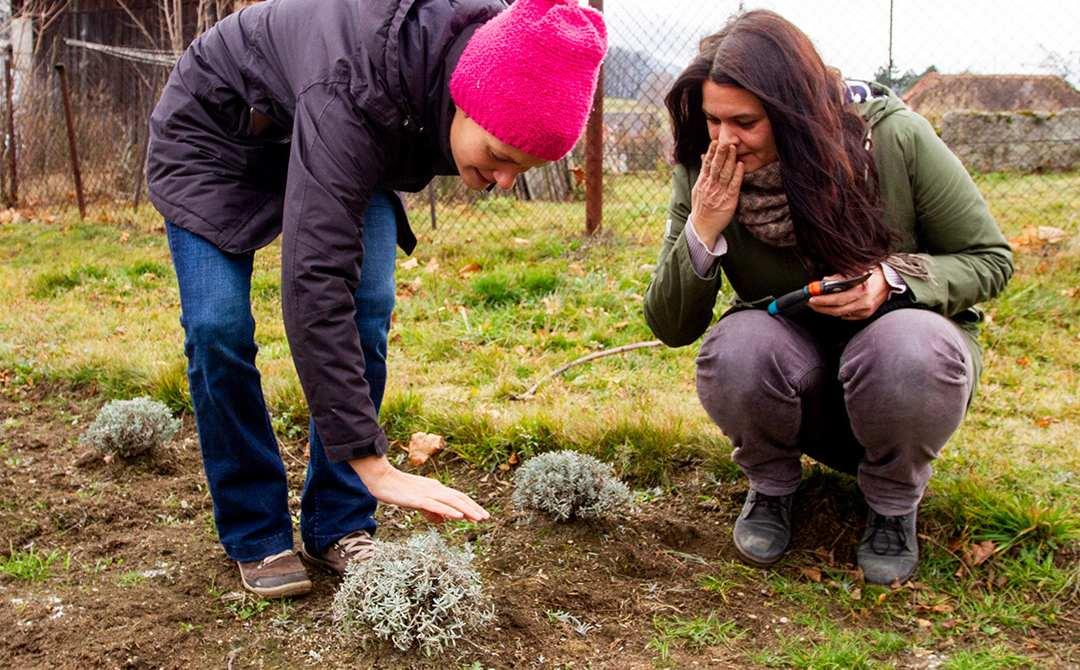 Listopadový workshop v raspenavské Levandulovně o ekologickém pěstování květin