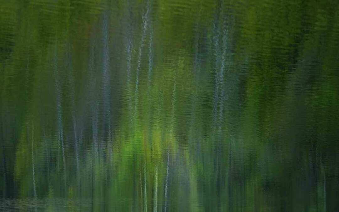 ANKETA: Zaostřeno na krásu Jizerských hor. Pomozte vybrat tu nejlepší fotografii