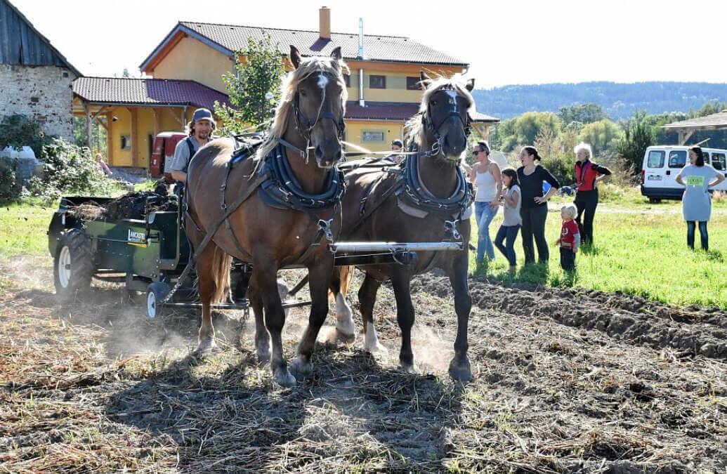 Zemědělcem na zkoušku. Projekt cílí na lidi, kteří chtějí začít farmařit