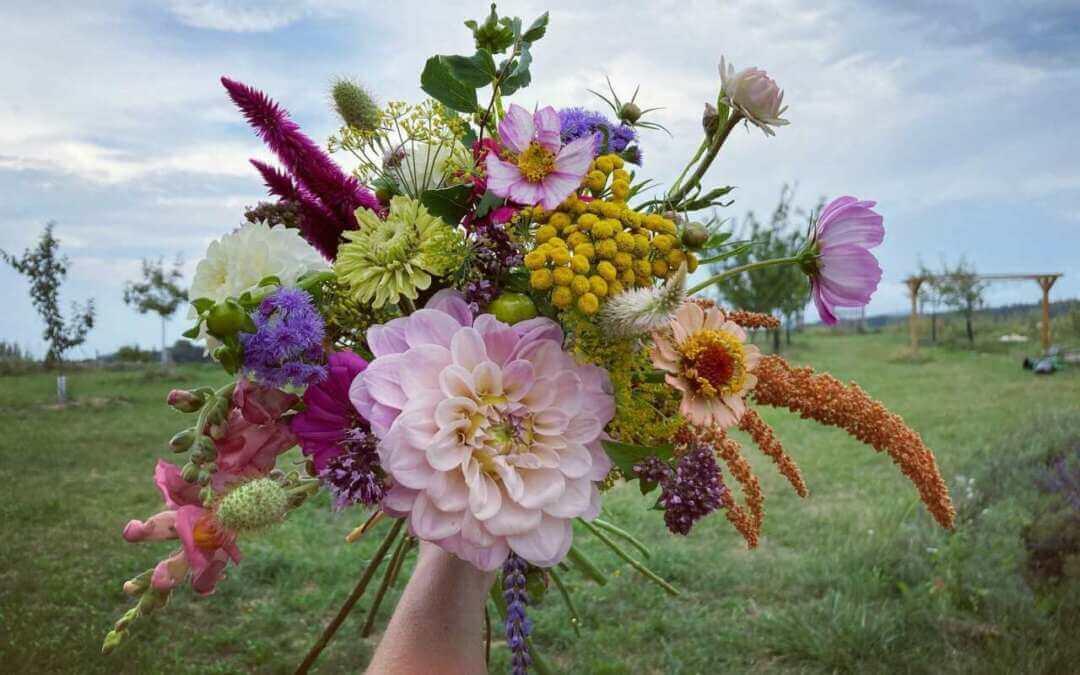 Regionálním produktem jsou i květiny z Jindřichovic a Stráže