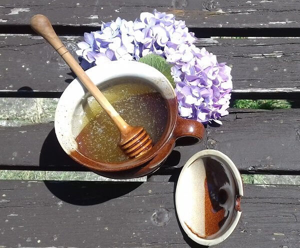 Med, svíčky, propolis i mateří kašička. Regionální výrobci jsou pilní jako včelky