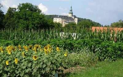 OBRAZEM: Zemědělství na Frýdlantsku vzkvétá i díky místní škole
