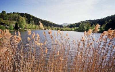 Ráj v Pekle, to je rybník Petr v klidném zákoutí Jizerských hor